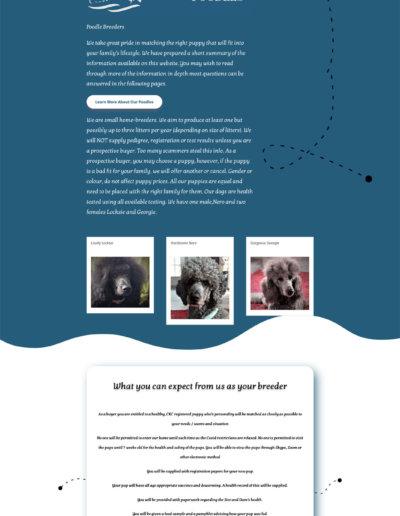 tallshippoodles Dog Breeder Web Design